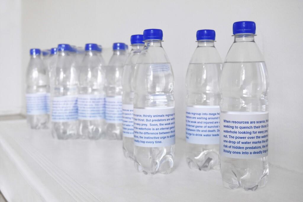 water bottle waterhole